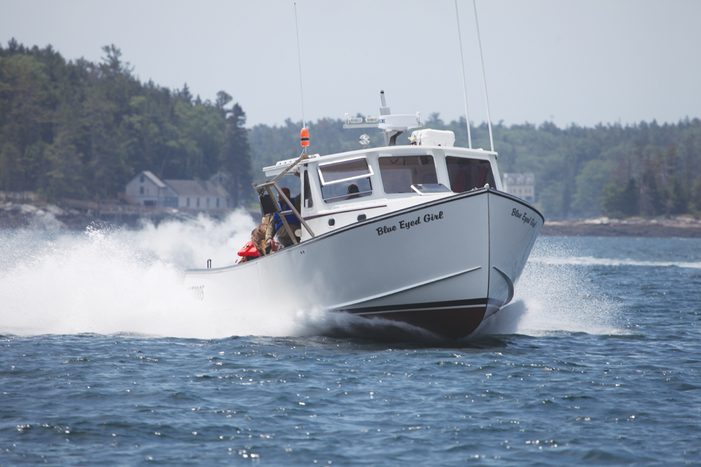 BLUE EYED GIRL Dominates Boothbay & Rockland